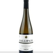 Gallipato-Delgado-Zuleta